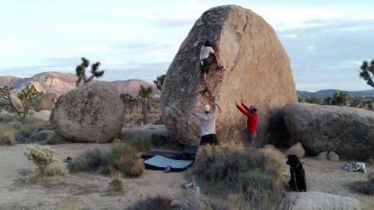 Little Port-Port goes bouldering