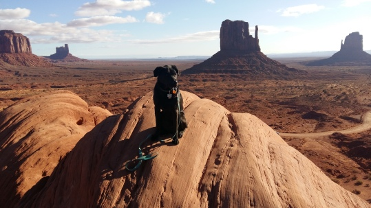 The Leash Monument Valley