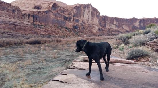 This Way Colorado Riverway Utah