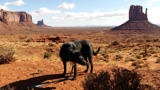 Wrong Way Monument Valley